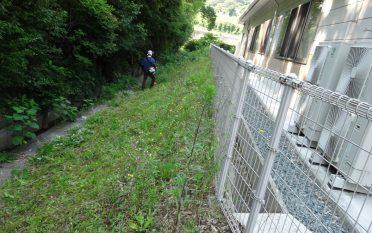 ボランティア部による草刈りを実施しました。