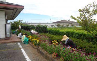 コミュニティセンター内の花壇手入れを実施しました。