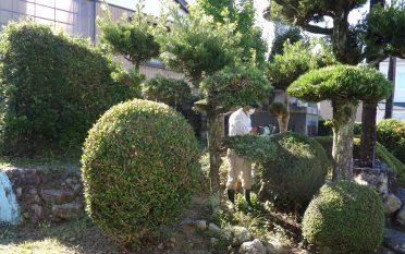 笠原地区忠魂碑とコミュニティセンター周囲の草刈りを行いました。
